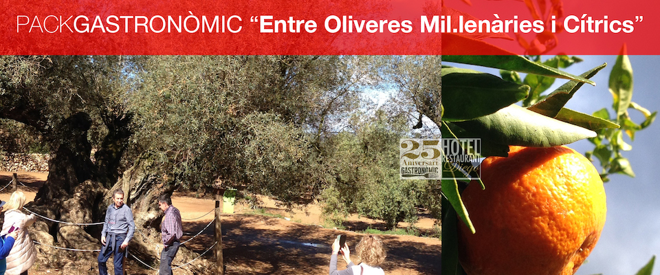 pack-entre-oliveres-mil-learies-i-citrics-copia